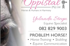 Request Quote: Equine Communication - South Africa
