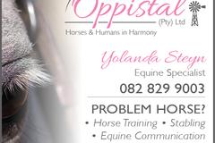 Horse Stabling - Gauteng, South Africa