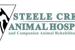Pet Physical Rehabilitation Services - Charlotte, NC