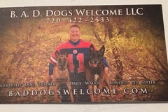 B.A.D. Dogs Welcome - Aurora, CO