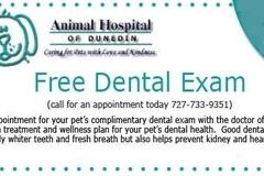 Request Quote: Free Dental Exam - Dunedin, FL