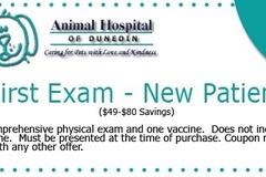 Request Quote: Veterinary Services - Dunedin, FL