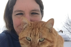 Request Quote: Waterfall Reiki & Animal Talk - Independence, KS