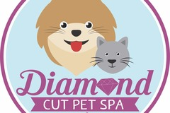 All Breed Grooming Services, Pet CPR Training - Phoenix, AZ
