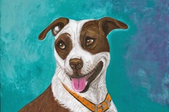Request Quote: Whimsical & Colorful Pet Portraits in Variety of Mediums