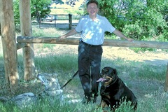 Better Manners Dog Training - Highlands Ranch, CO