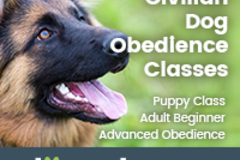 Dog Solve LLC  Dog Obedience Training - Falls Church, VA