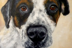 Request Quote: Dog And Pet Paintings - Beaworthy, UK