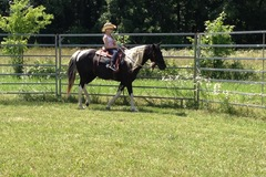 Request Quote: Boudreau's Acres Horse Boarding & Horse Motel-Springfield MO