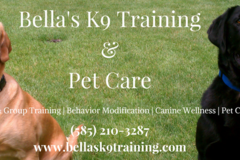 Request Quote: Pet Care and More - Rochester, NY