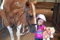 Bookable Offer: Horseback Riding Lessons and Horse Boarding - Wichita, KS