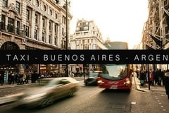 Free Consultation: Taxi Pet Friendly in Buenos Aires, Argentina