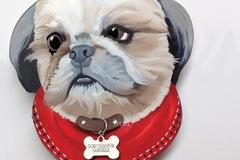 Free Consultation: Unique Custom Shaped Pet Portraits - Boston, MA