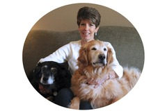 Bookable Offer: Animal Communication Consultation - Worldwide