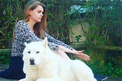 Bookable Offer: Animal Communicator and Healer - Cape Town, South Africa
