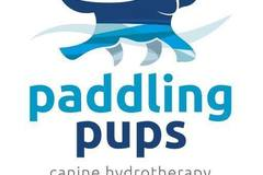 Free Consultation: Canine Hydrotherapy in Omagh, Co Tyrone, Northern Ireland