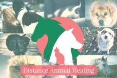 Bookable Offer: Distance Animal Healing - London, UK