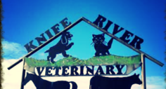 Knife River Veterinary Clinic - Beulah, ND