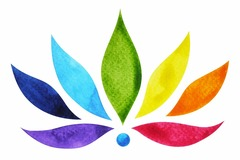 Bookable Offer: Reiki for Pets - Baltimore, MD