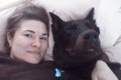 Request Quote: Melissa's Mutts n Mongrels Obedience Training - Dayton, OH
