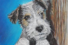 Free Consultation: Pet Portraits in Pastels and in Sepia Pencils - Piacenza, IT