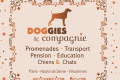 Bookable Offer: Professional Dog Trainer - Paris, France