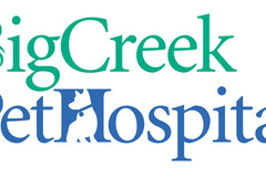 Big Creek Pet Hospital - Cleveland, OH