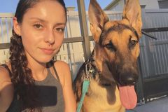 Request Quote: Animal Lover Looking for Pet Sitting Work - Orlando, FL