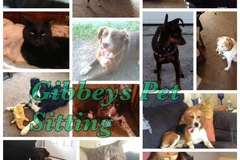 Free Consultation: Gibbeys House and Pet Sitting - Romulus, MI