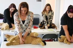 Bookable Offer: Pet CPR and First Aid Class - West Palm Beach, FL