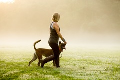 Free Consultation: In-home and Board/Train Dog Training - Daphne, AL