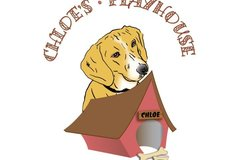 Chloe's Playhouse Pet Sitting and Dog Walking Service