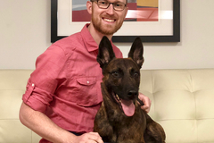 Ancillary K9 - Obedience & Behavioral Solutions - Denver, CO