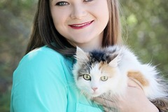 Request Quote: Professional Cat Behavior Consultant- Phoenix, AZ/Nationwide