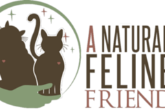 Free Consultation: A Natural Feline Friend - Fort Wayne, IN
