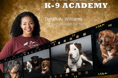 Request Quote: Underdog K-9 AcademyLLC - Certified Professional Dog Trainer