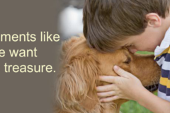 Good Shepherd Pet Services - Piedmont, SC