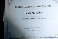 Animal Reiki - 10% off First Session - Milford, DE