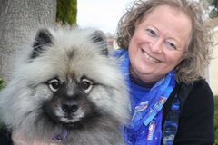 Request Quote: Pet Loss Grief Counseling - Worldwide - San Francisco Bay Area, CA