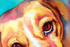 Watercolor Pet Portrait Paintings