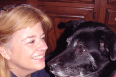 Request Quote: Animal Voices - Wasilla, AK