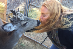 Request Quote: Hear Them Speak: Animal Communication, Counseling, Healing  - Bay Minette, AL