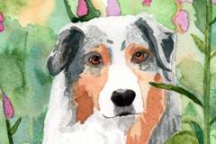 Request Quote: Watercolor Pet Portraits  - Pickering, ON