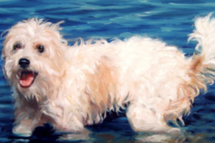 WaterLover, custom Pet Portrait oil paintings 10x12""