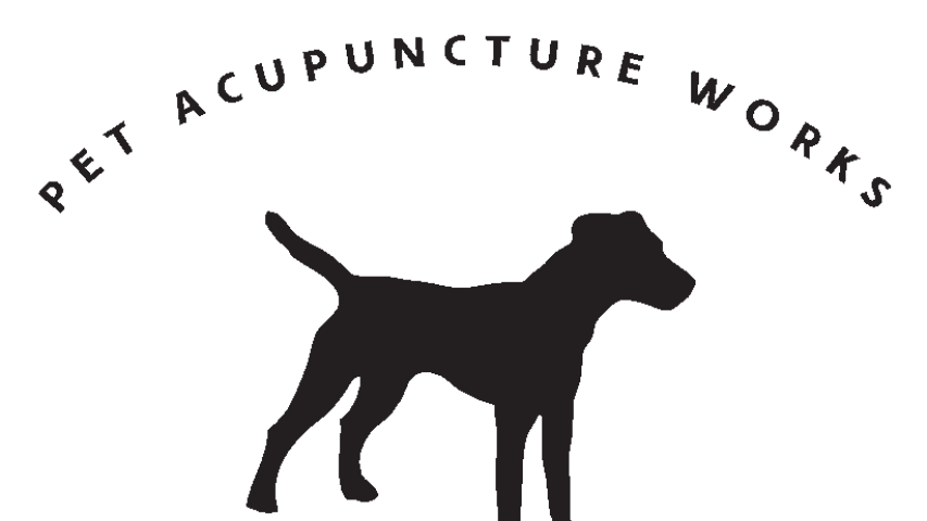 Pet Acupuncture Works - Boston, MA