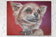 Request Quote: Randi Schneweiss Custom Pet Portraits - New York, NY,