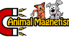 Animal Magnetism Professional Pet Care
