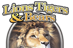 Lions Tigers and Bears