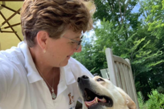 Request Quote: Bailey's Bark Pet Care Services - Wickliffe, OH
