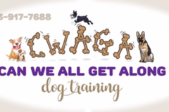 Can We All Get Along Dog Training LLC.- Tampa, FL